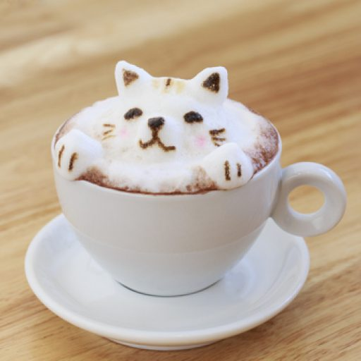 cropped-cat-coffee.jpg